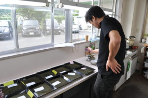 静岡大貴製茶工場、秋の銘茶レポート