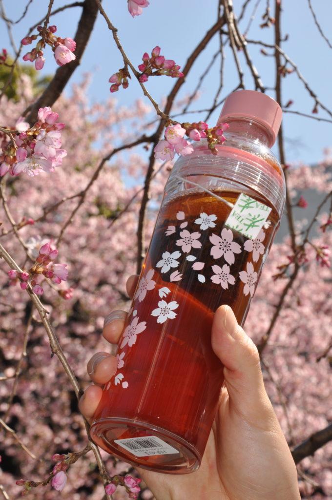 2021年桜商品と新ライフスタイル「刻音」